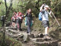 Inca-Trail with hikers