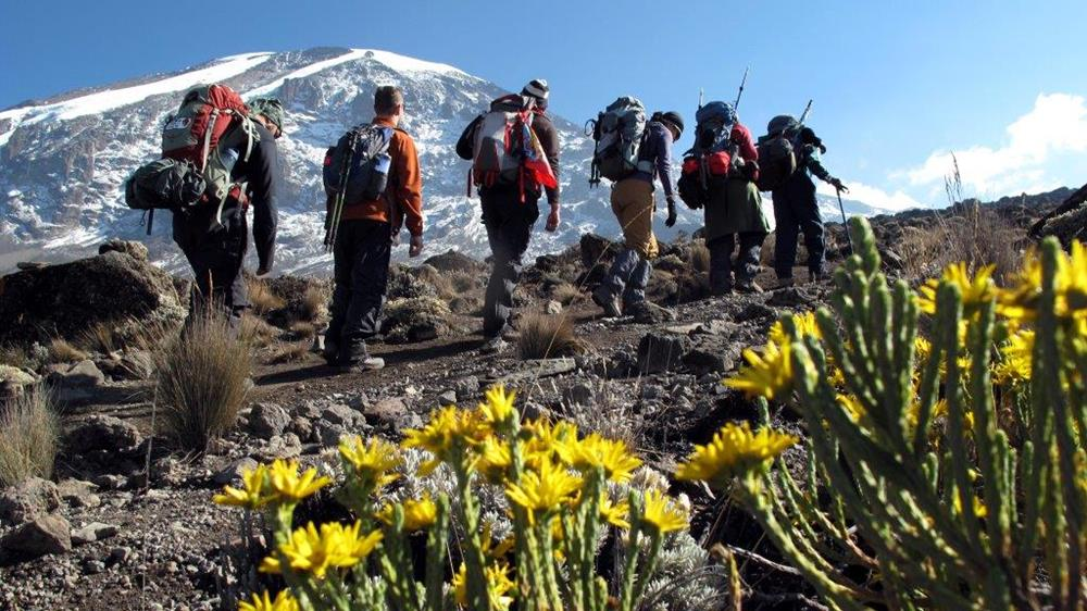 http://www.afcaids.org/images/frontpage/climbing-kilimanjaro.jpg