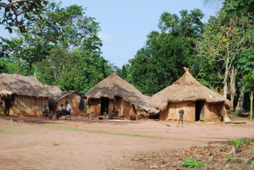 Traditional Congolese Housing