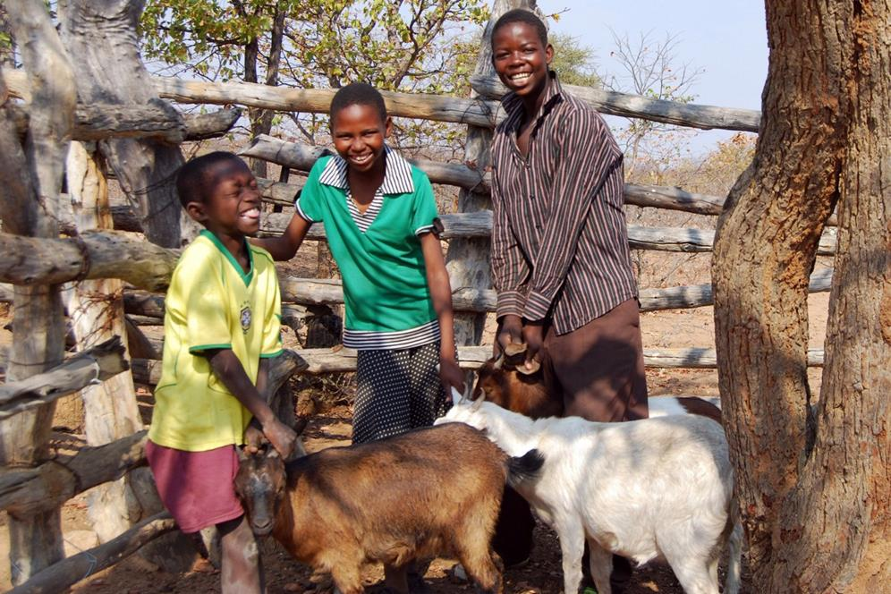 http://www.afcaids.org/images/kids4kids/children-with-goats.jpg