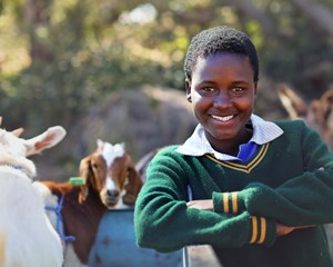 Zimbabwe Goat Distribution
